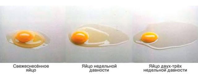 проверка разбитого яйца