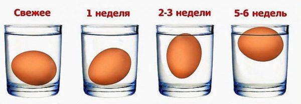 проверка яиц водой