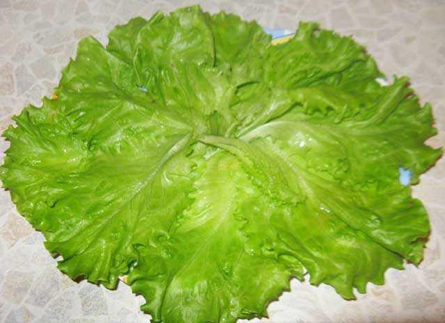 вымытые листья салата