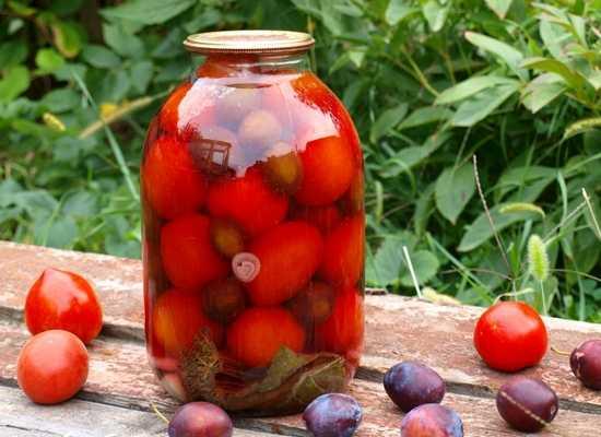 Рецепты заготовок помидоров на зиму со сливой