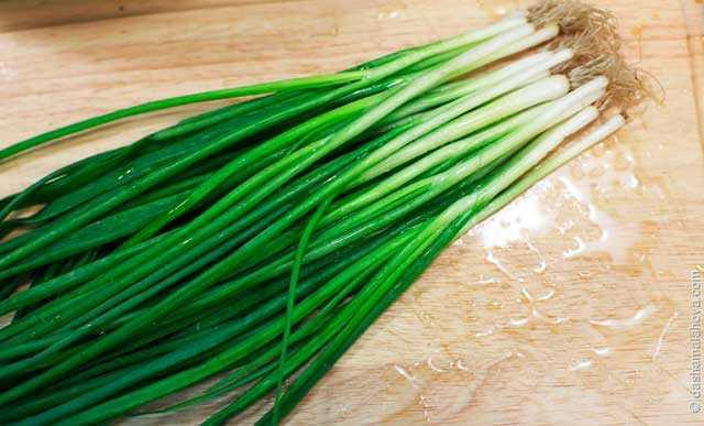Как заморозить зеленый лук на зиму